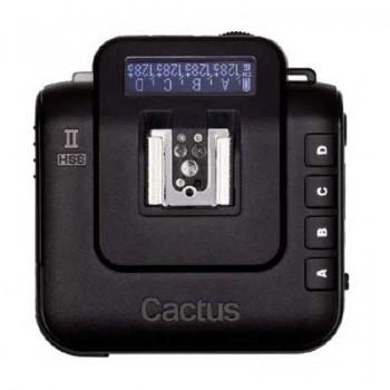 Cactus V6